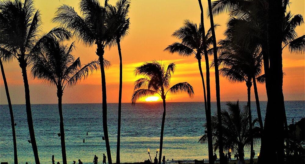 ハワイコンドミニアム
